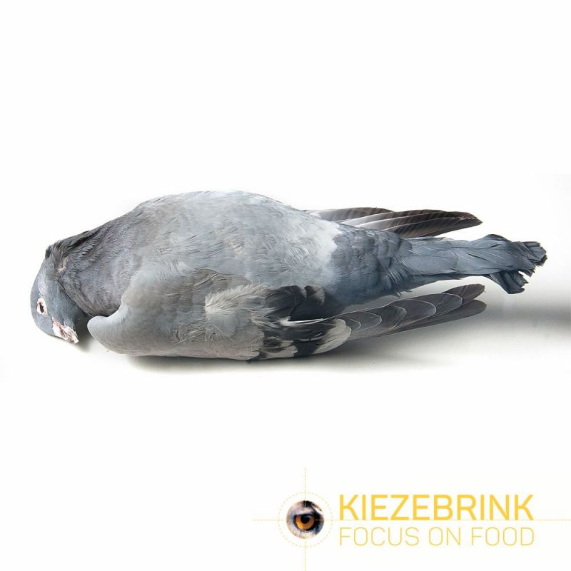 Pigeon à l'unité à 3,24€ sur Barf-Food-France