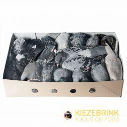 Pigeons X 10 à 29,24€ sur Barf-Food-France