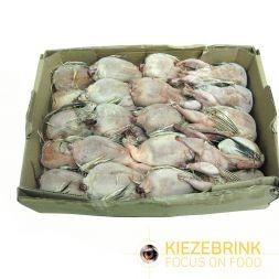 Caille sans plume et intestin X +/-7Kg à 40,33€ sur Barf-Food-France