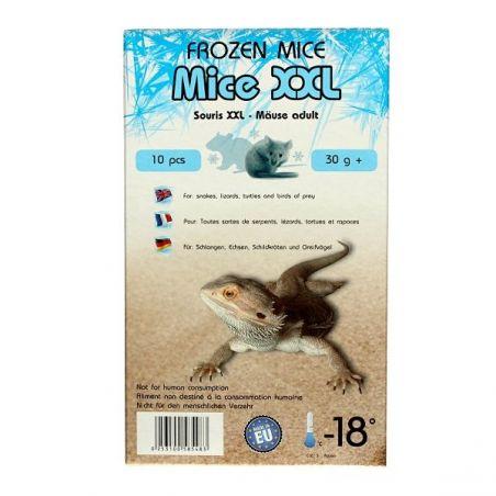 Souris congelées XXL 31g+ Emballées par  10 pcs