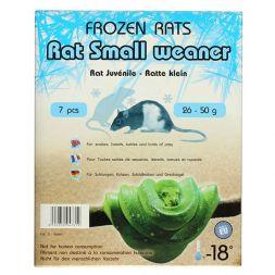 Rats congelées 26-50g Emballés par  7 pcs à 10,83€ sur Barf-Food-France