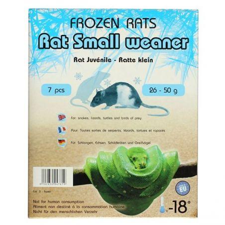 Rats congelées 26-50g Emballés par  7 pcs