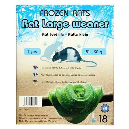 Rats congelées 51-90g Emballés par  7 pcs