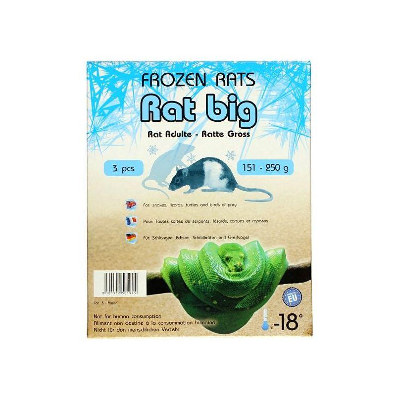 Rats congelées 151-250g Emballés par  3 pcs à 9,58€ sur Barf-Food-France
