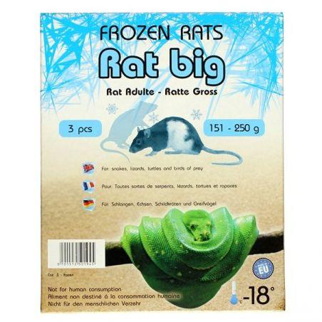 Rats congelées 151-250g Emballés par  3 pcs