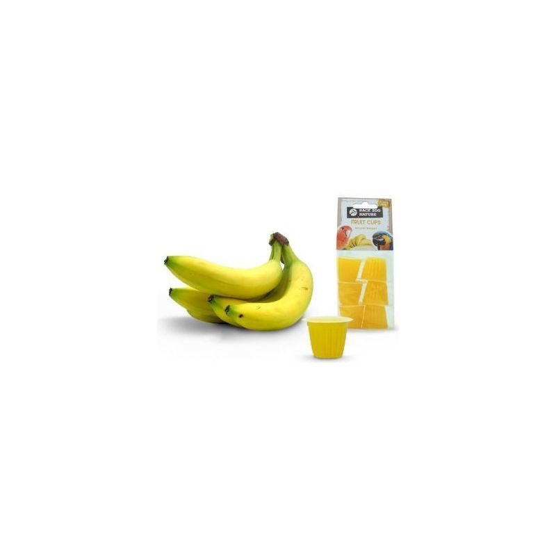 Coupe de fruit banane x6 à 2,99 € sur Barf-Food-France