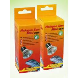 Halogen Sun Mini 35 W 2 PCS à 9,99€ sur Barf-Food-France