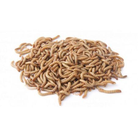 Filet de +/- 1000 g vers de farine