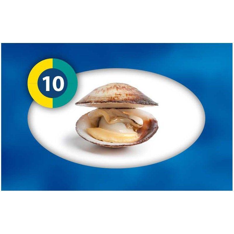 Blister coques broyés +/- 95g à 1,42€ sur Barf-Food-France