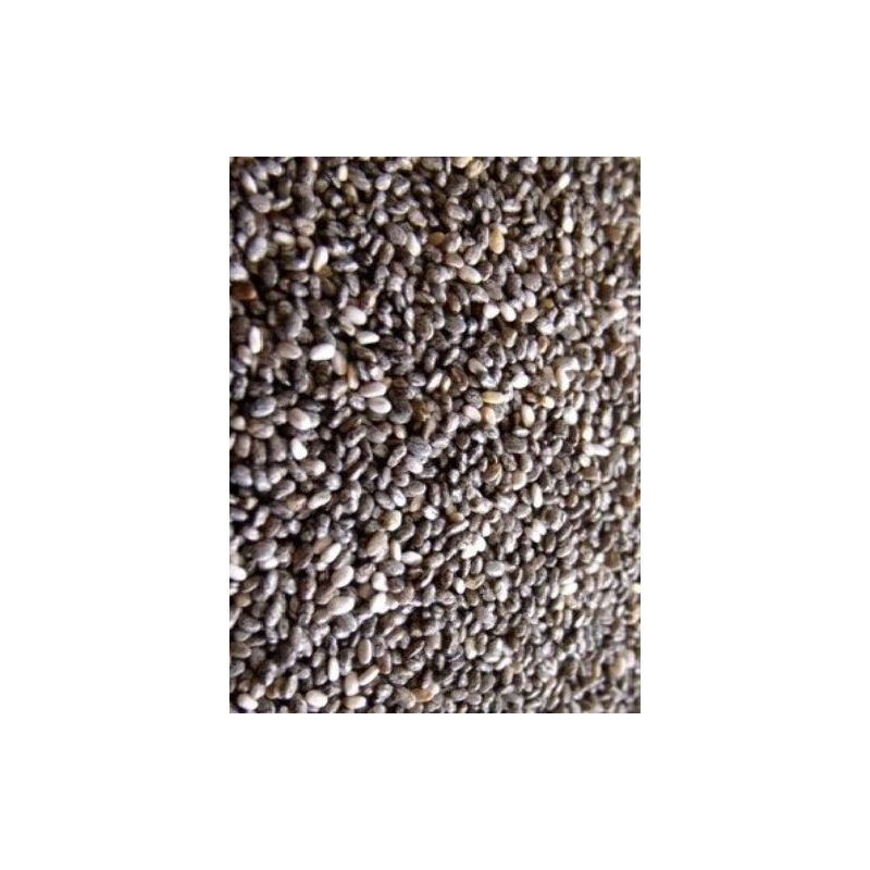 GRAINES DE CHIA sac 25 kg à 129,54 € sur Barf-Food-France