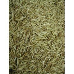 GRAINES D'HERBE sac 10 kg à 29,08 € sur Barf-Food-France
