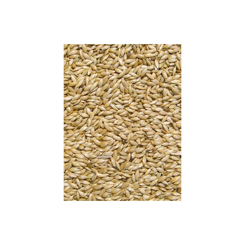 MILLET PLAT/ ALPISTE sac 5 kg à 9,08 € sur Barf-Food-France