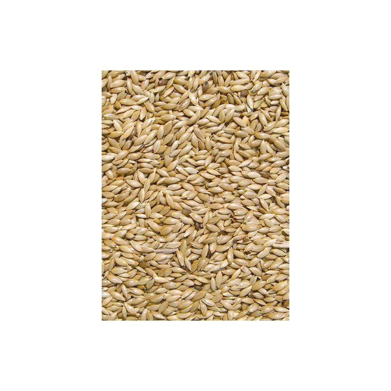 MILLET PLAT/ ALPISTE sac 20 kg à 26,17€ sur Barf-Food-France