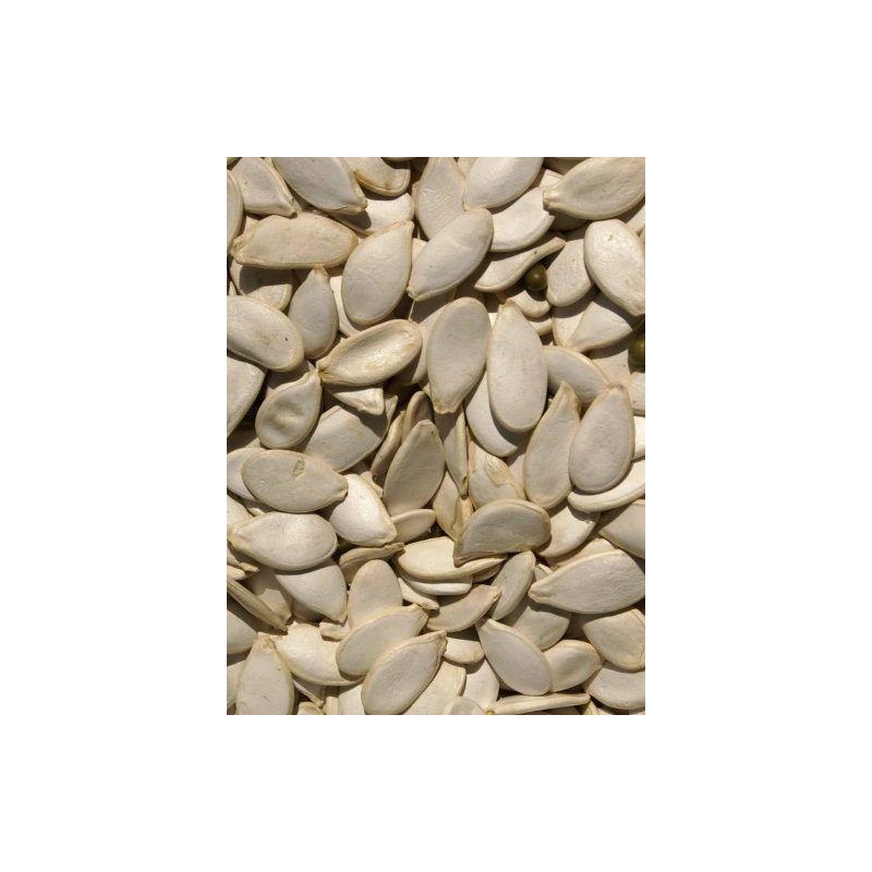 GRAINES DE CITROUILLE sac 25 kg à 148,81€ sur Barf-Food-France