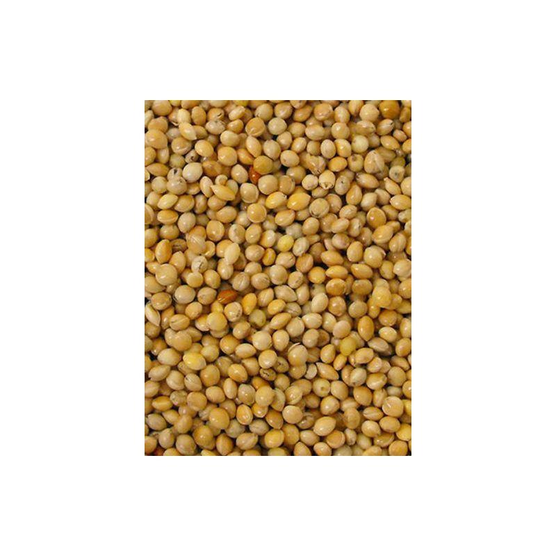 MILLET ROND JAUNE sac 1 kg à 2,26€ sur Barf-Food-France