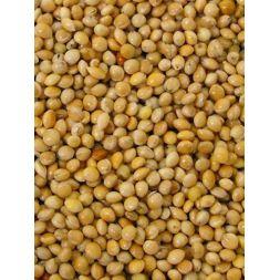 MILLET ROND JAUNE sac 5 kg à 7,26€ sur Barf-Food-France