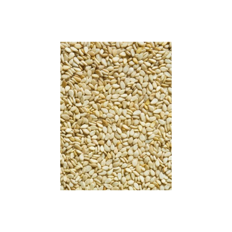 GRAINES DE SESAME sac 0,9 kg à 5,35 € sur Barf-Food-France