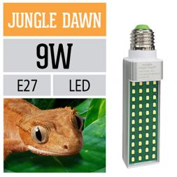 Jungle Dawn 9W à 47,08 € sur Barf-Food-France