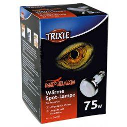 Lampe spot à chaleur:ø 80 × 108 mm, 75 W